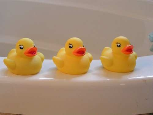rubber-duckies-146