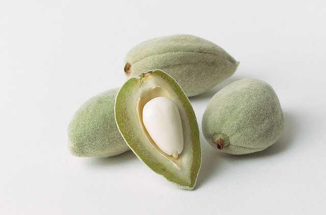 almonds-805427
