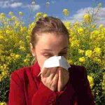 アレルギー体質を作るもの
