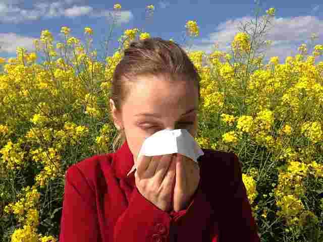 allergy-1738191