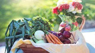 vegetables-2485056