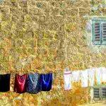 肌断食派の洗濯