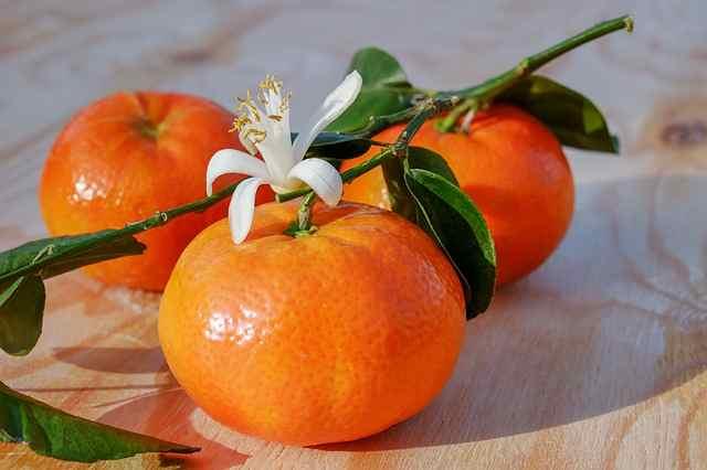 tangerines-3114765