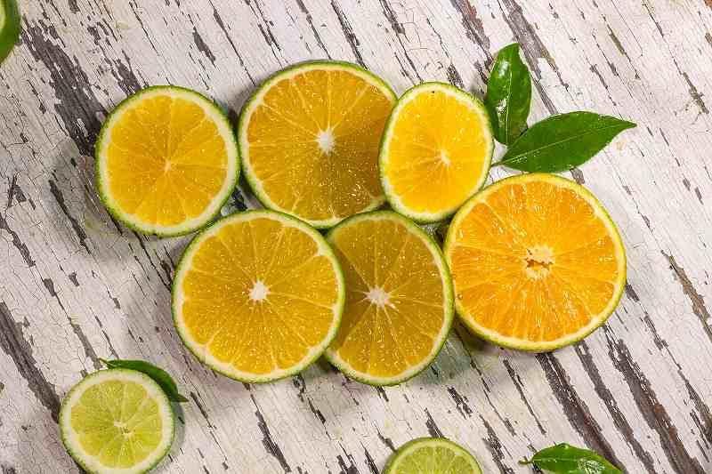 orange-3487772